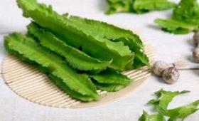 Mách bạn cách chữa bệnh dạ dày bằng hạt đậu rồng dân gian hiệu quả