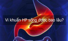 Vi khuẩn HP sống được bao lâu? Các dấu hiệu nhận biết khi mắc bệnh?